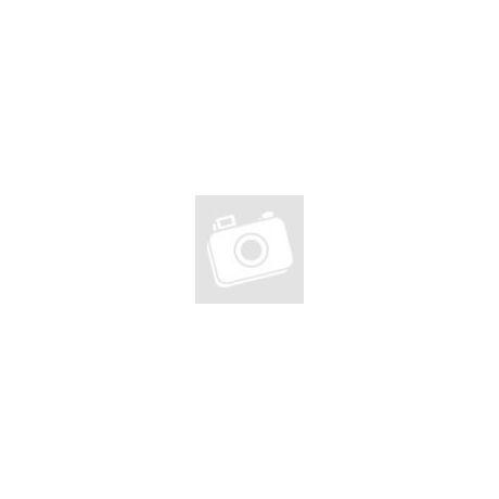Zenmuse X5 Part 1 Gimbal and camera (No lens) (Zenmuse X5 kamera, lencse nélkül)
